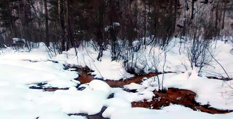 Долина Нарзанов зимой